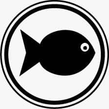 אובן בייקט בוגר דגים 11.3 קילו