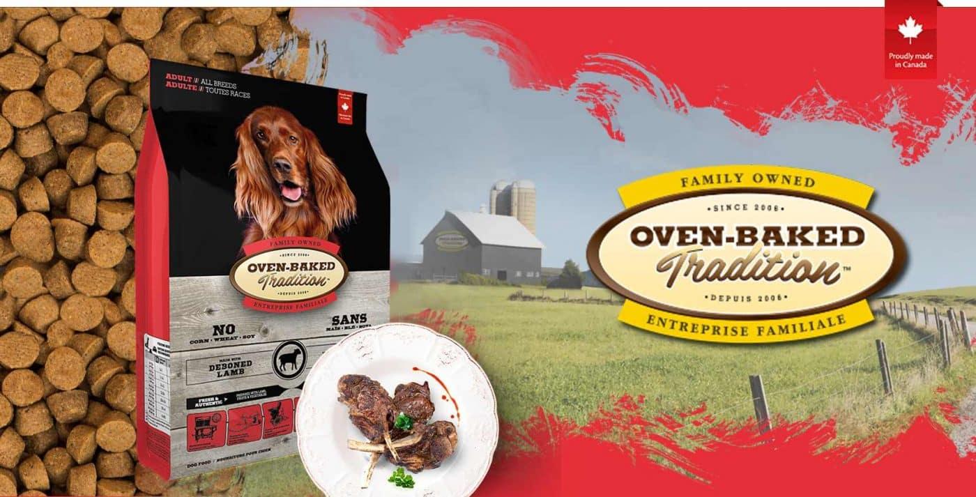 אובן בייקט כבש בוגר 11.3 קילו
